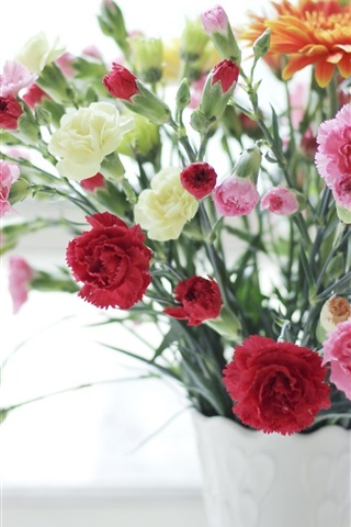 iPhone Wallpaper Carnations, pink red and white flowers, vase