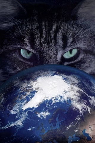 iPhone Wallpaper Cat catch Earth, creative pictures