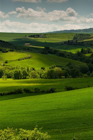 iPhone Wallpaper Italy, Tuscany, green fields, trees, clouds, dusk