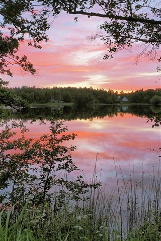Morning Nature Scenery Lake Water Reflection Trees Nacka