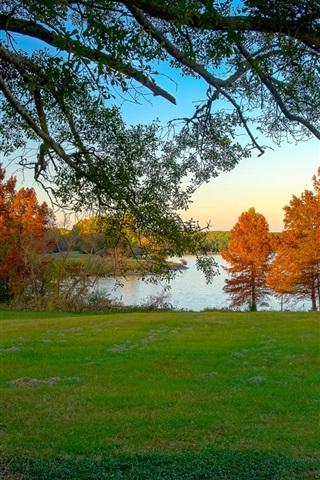 iPhone Wallpaper Morning, trees, autumn, grass, lake