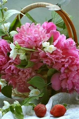 iPhone Wallpaper Pink peonies and white jasmine, basket, strawberry