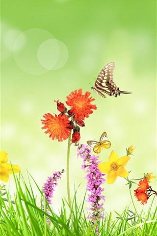 iPhone Wallpaper Spring, flowers, grass, butterfly, green background, creative design