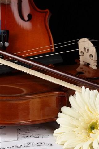 iPhone Wallpaper White gerbera, violin
