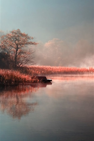 iPhone Wallpaper Autumn, morning, lake, fog, grass, trees, boat