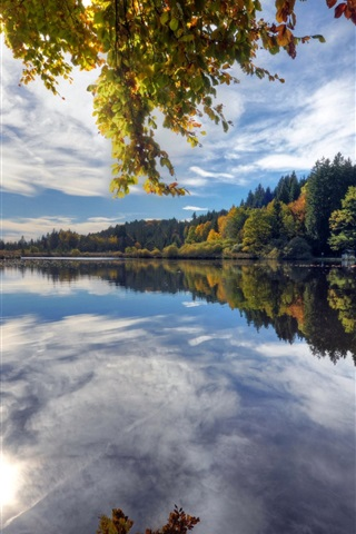 iPhone Wallpaper Deininger Weiher, Germany, lake, water reflection, trees, autumn