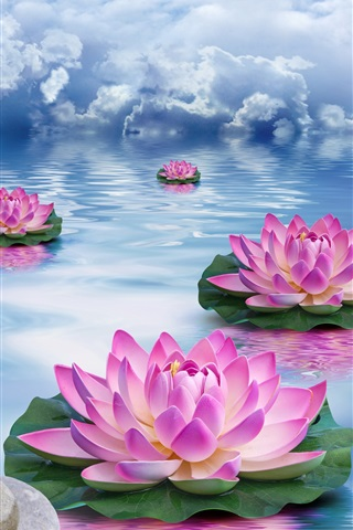 iPhone Wallpaper Lotus, stones, water, pink flowers, clouds, creative design