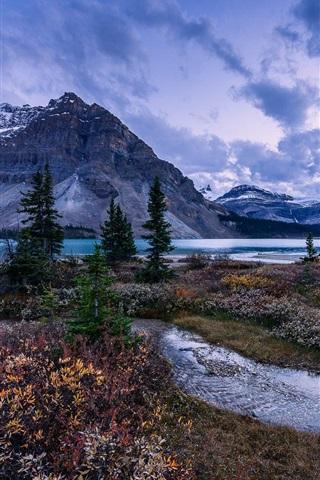 iPhone Wallpaper Mountains, trees, Bow Lake, Alberta, Canada, Banff National Park