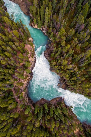 iPhone Wallpaper Nature landscape, forest, river, top view