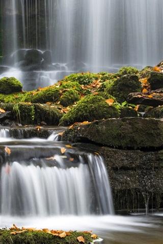 iPhone Wallpaper Stream, waterfall, leaves, moss, Yorkshire, UK