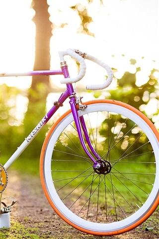 iPhone Wallpaper Sun rays, trees, grass, bike