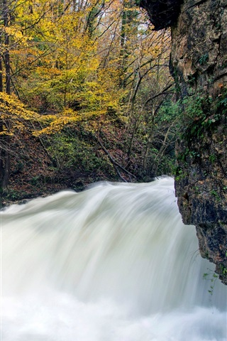 iPhone Wallpaper Autumn, tree, stream