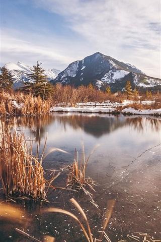 iPhone Wallpaper Banff National Park in winter, Alberta, Canada, lake, grass, mountain, snow