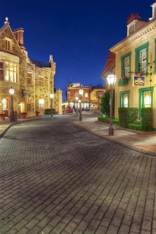iPhone Wallpaper Disneyland, sidewalk, street, night, lights, houses, USA