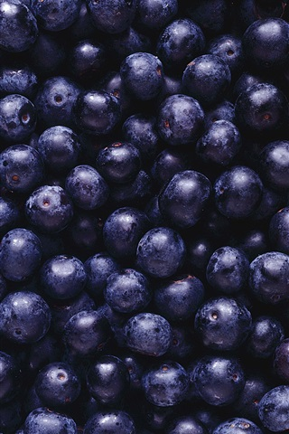 iPhone Wallpaper Many blueberries