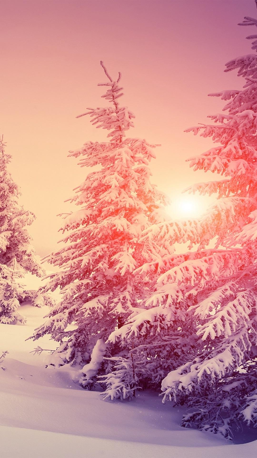 厚い雪 冬 森 木 暖かい太陽 1080x1920 Iphone 8 7 6 6s Plus 壁紙