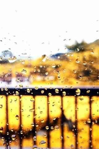 iPhone Wallpaper Window glass, autumn, rain, water drops