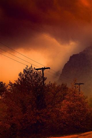 iPhone Wallpaper Autumn, trees, road, fog, night