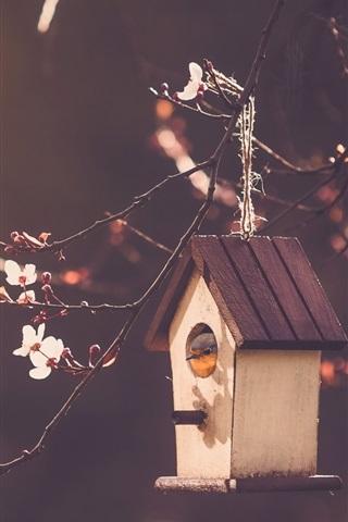iPhone Wallpaper Bird house, cherry flowers