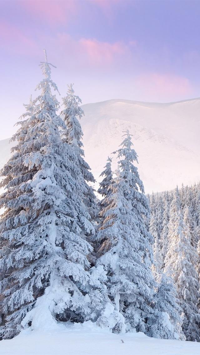Картинки для самсунга зима