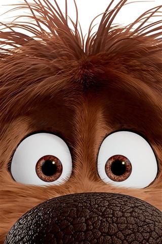 iPhone Hintergrundbilder Herzog, Das geheime Leben der Haustiere