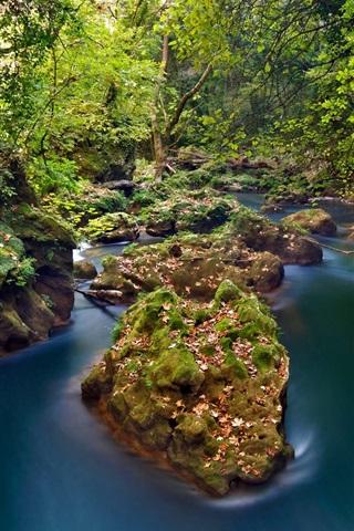 iPhone Wallpaper Greece, Epirus, Thyamis River, forest, stones, autumn