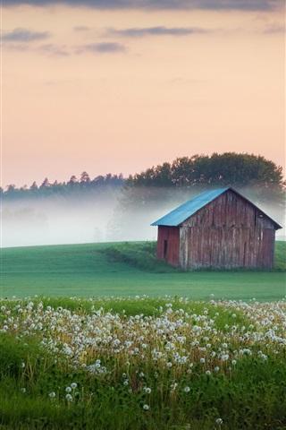 iPhone Wallpaper Morning, house, dandelions, trees, fog