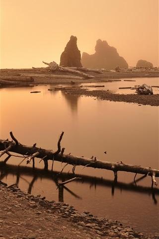 iPhone Wallpaper Mountain, river, fog, dry trees, dawn, sunrise