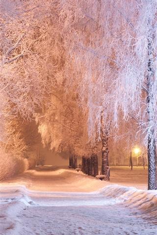 iPhone Wallpaper Winter, park, trees, snow, path, bench, night, lights