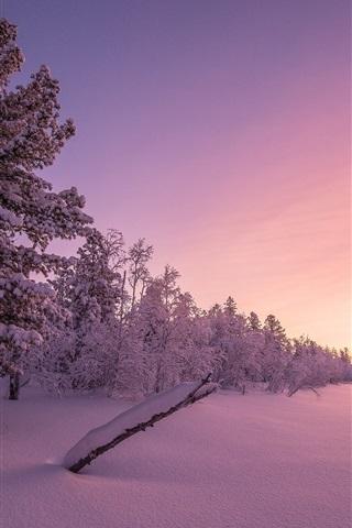 iPhone Wallpaper Winter, snow, trees, dusk, sunset