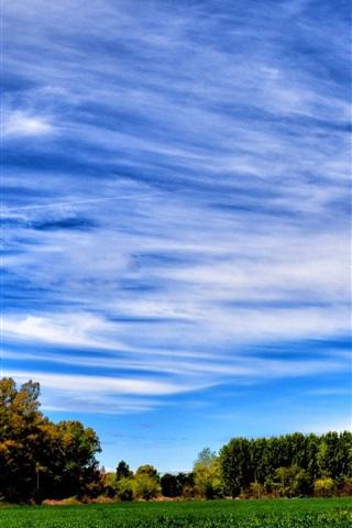 iPhone Wallpaper Blue sky, trees, field, summer
