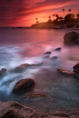 iPhone Wallpaper California, beautiful sunset, sea, coast, palm trees
