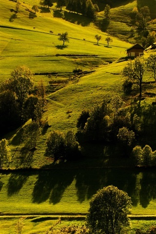 iPhone Wallpaper Germany, Baden-Wurttemberg, trees, houses, grass, sunlight