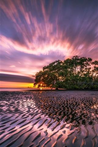 iPhone Wallpaper Ocean, sunrise, sea, beach, tree, sky, clouds