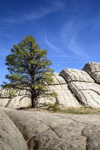 iPhone Wallpaper Rocks, mountains, tree, blue sky, nature