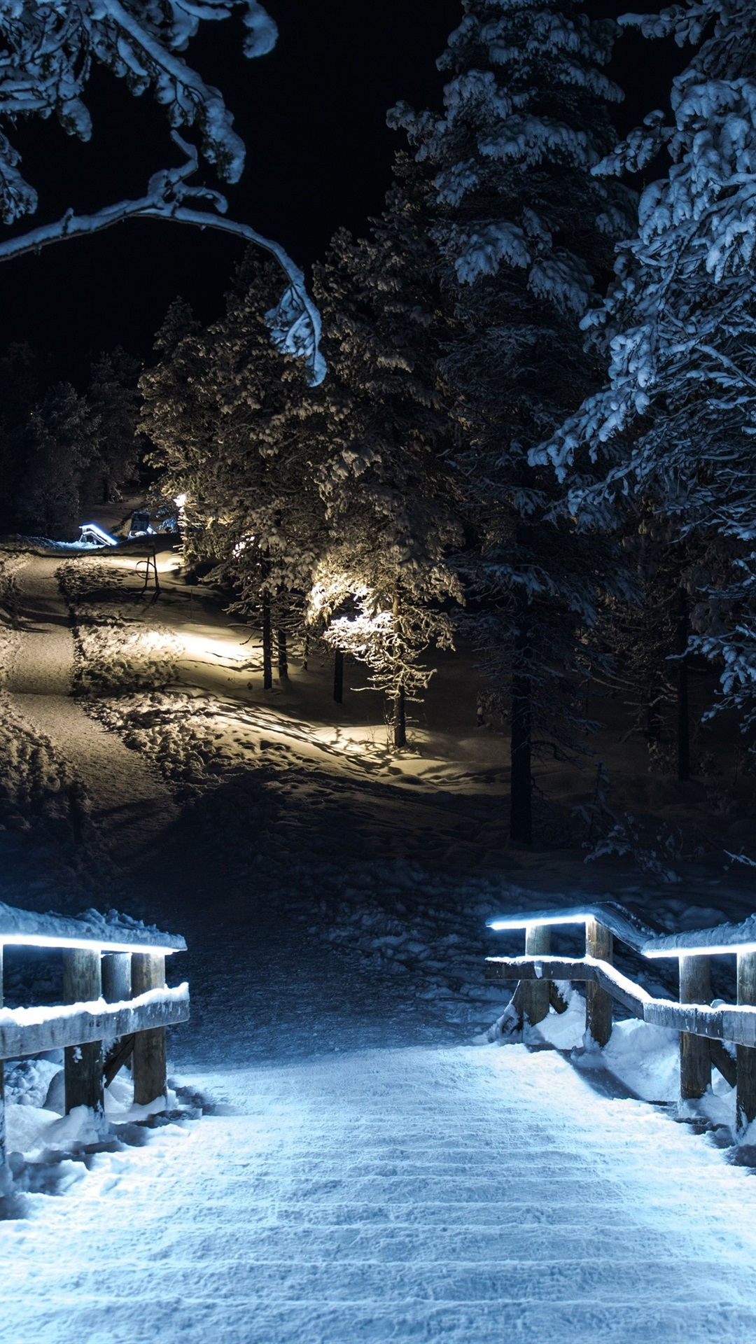 Winter Park At Night Snow Trees Wood Stairs Lights