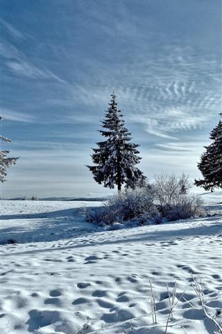 iPhone Wallpaper Winter, snow, trees, sun rays