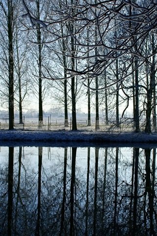iPhone Wallpaper Winter, trees, river, sunrise, snow, water reflection