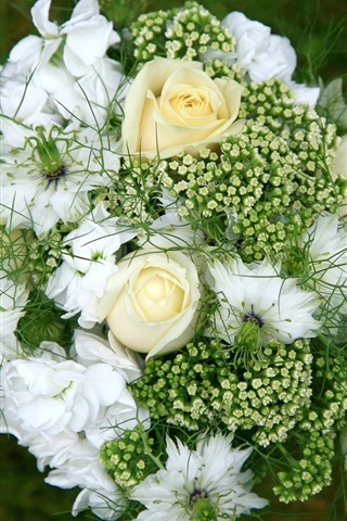 iPhone Wallpaper Bouquet, flowers, white rose