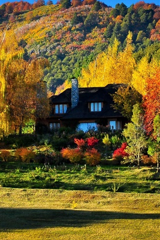 iPhone Wallpaper Colorful autumn, trees, yellow and red leaves, house