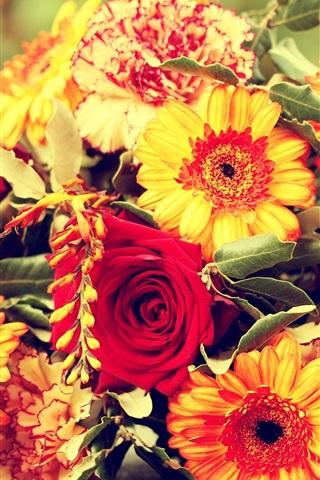 iPhone Wallpaper Daisy, rose, carnations, bouquet, flowers