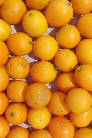 iPhone Wallpaper Many kumquat
