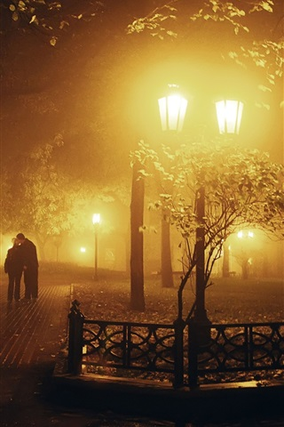 iPhone Wallpaper Park at night, lights, trees, lovers, kiss