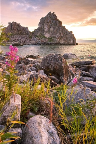 iPhone Wallpaper Russia, Baikal, lake, stones, mountains, flowers, clouds, sunset