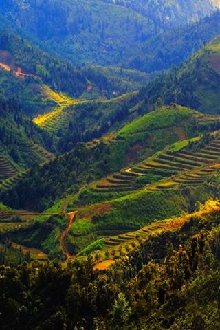 iPhone Wallpaper Vietnam, Sapa, mountains, trees, fields