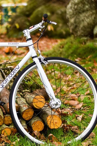 iPhone Wallpaper White bicycle, autumn, nature