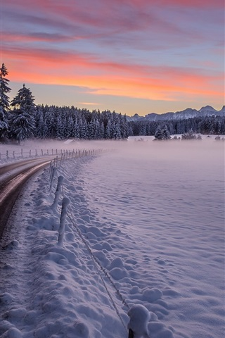iPhone Wallpaper Winter, road, trees, thick snow, sunset