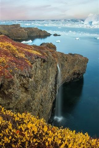 iPhone Wallpaper Arctic Eden, sea, coast, ice, plants