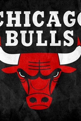 iPhone Papéis de Parede Logotipo de Chicago Bulls