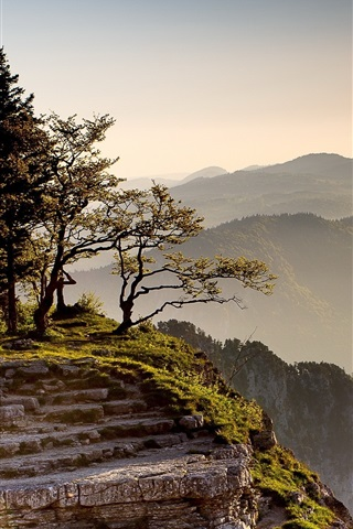 iPhone Wallpaper Cliff, mountains, trees, grass, rocks, morning